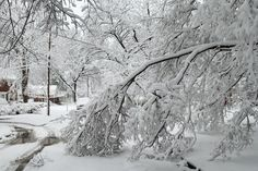 We usually get warning before a big storm hits. Use that time to make sure you have these 7 things before the next snow storm comes your way. #WinterStormJonas