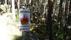 @Arturo Larena 13 oct Red Natura 2000. Un mensaje para no olvidar de ruta por #Canencia. @LifeInfonatur #Guadarrama pic.twitter.com/9uiTVSMLa...