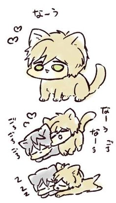 From uto00rog ... Free! - Iwatobi Swim Club, haruka nanase, haru nanase, haru, nanase, haruka, free!, iwatobi, makoto tachibana, makoto, tachibana, cat, neko