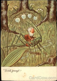 Fritz Baumgarten (German, Little Elf Riding a Grasshopper (postcard). Published by Hans Glogner Neu-Isenburg. Fairy Land, Fairy Tales, Troll, Baumgarten, Fairytale Art, Arte Pop, Lily Of The Valley, Children's Book Illustration, Fantasy Creatures