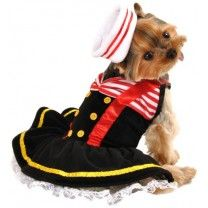 Anit Accessories Sweetheart Sailor Dog Costume, X-Large 26-inches