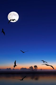 Night Stream, by Mustafa Four, on 500px.