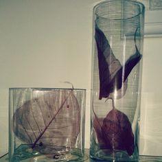 Una leggerezza insostenibile - opera art HomeDecor glass suggestion feuilles minimal original inspiration