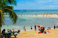 Poipu Beach Snorkeling: Great protected, shallow area – best snorkeling is to the west of the tombolo which is the narrow strip of sand that runs out to  Nukumoi Point.