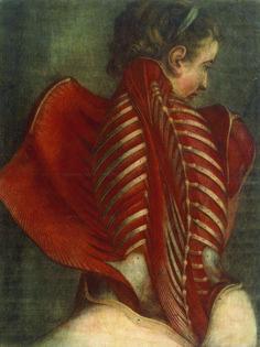 """Jacques-Fabien Gautier d'Agoty : Femme vue de dos, disséquée de la nuque au sacrum, dite """"l'Ange anatomique"""". 1745. Estampe gravée en couleurs, 67 cm x 50. Photo BnF, Dist-Grand Palais / Image BnF"""