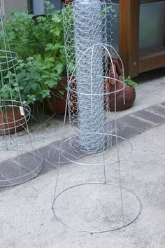 There is Always Thyme for......Tomato Cage and Chicken Wire Cloche DIY