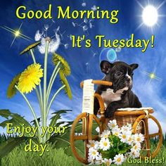 Good Morning, It's Tuesday! Enjoy your day. God Bless!