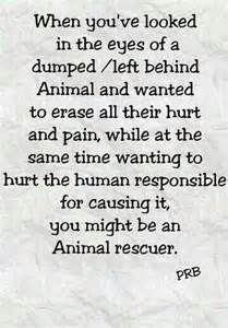Animal Rescue Sayings - Bing Images