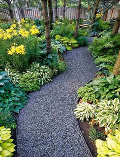I would love a gravel path like this around our property, through the woods--Hosta & Fern Path More