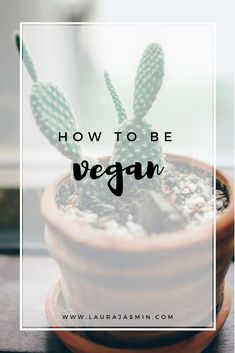 how to be vegan and 7 vegan tips for beginners that can help you be a vegan.