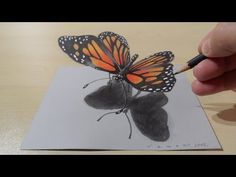 3D Drawing a Butterfly, Magical Art - YouTube