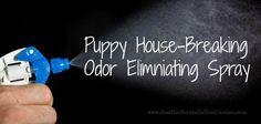 Non-Toxic homemade pet odor eliminating spray