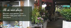 Secret  garden Cafe Brisbane