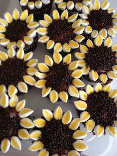 Chocolate Peanut Butter Sunflower Cupcakes!