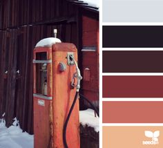 Rustic winter