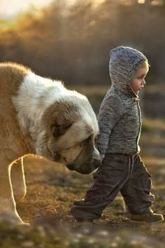 lovely pictures of animals and pets with their little human friends!