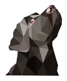 Black Labrador Geo Art (Print Version) by emynemzz.deviantart.com on @DeviantArt