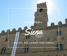 Siena, Dom, Willis Tower, Gaia, Building, Filing Cabinets, Horse Racing, Tuscany, Italy
