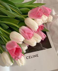 Luxury Flowers, Beautiful Flowers, Blossom Flower, My Flower, Aesthetic Iphone Wallpaper, Aesthetic Wallpapers, Pink Tulips, Pink Flowers, Flower Aesthetic