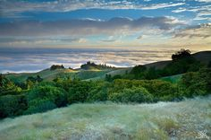 Tamalpais Breeze Marin County California - Patrick Smith
