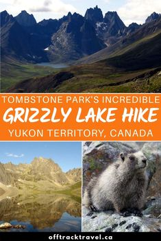 Hiking the Grizzly Lake Trail, Tombstone Territorial Park, Yukon Territory Oh The Places You'll Go, Cool Places To Visit, Hiking Dogs, Hiking Trails, Yukon Territory, Canada North, Canada Eh, Arctic Circle, Banff National Park