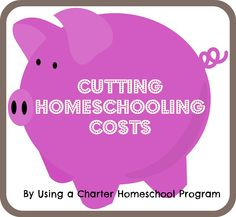 Cutting Homeschooling Costs By Using a Charter Homeschool Program
