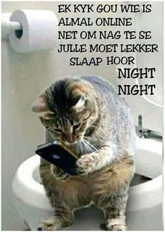 Good Night Messages, Good Night Quotes, Good Morning Good Night, Cute Cartoon Images, Goeie Nag, Afrikaans Quotes, Night Wishes, Biblical Quotes, Special Quotes