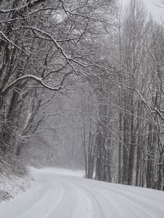 See photos and video of snow on the Blue Ridge Parkway near Asheville, North Carolina, and see ways to enjoy it for winter sports. Winter Love, Winter Wonder, Winter Snow, Smoky Mountain Christmas, Snow Mountain, Blue Ridge Parkway, Blue Ridge Mountains, Winter Photography, Nature Photography