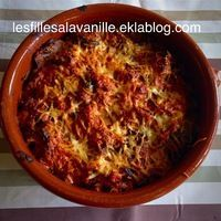 .  GRATIN D'AUBERGINES A LA CREME   Accessoires  : ultrablade, mélangeur  Ingrédients   3-4 aubergines 1 boite de pulpe de tomates 1 ou 2 boites de lardons 2 oignons 2 gousses...