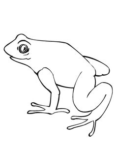 Frogs Hibernate Coloring Pages For Kids Printable