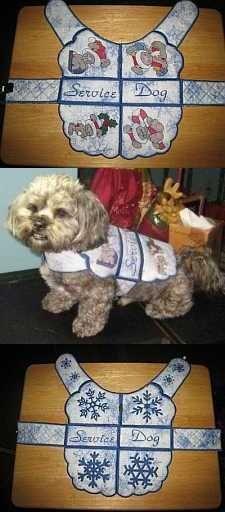 Make a Dog Coat More