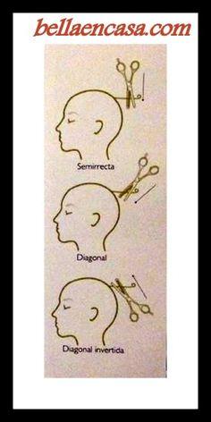 divisiones basicas para cortar cabello - Buscar con Google