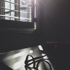 ++ rays & quiet.