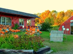 Emery Farm in the Autumn in Durham, New Hampshire. http://www.visitnh.gov/