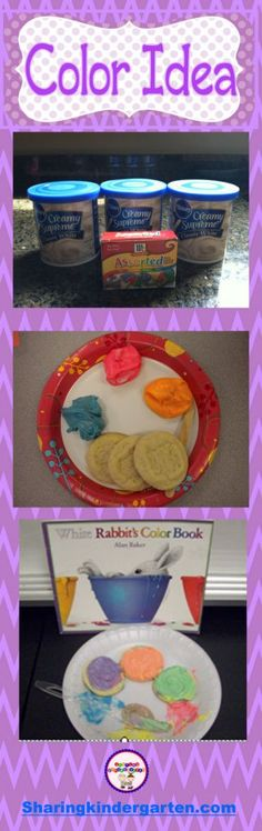 Check out this Color Science Experiment! I am so excited to share with you an awesome,  wonderful activity all about colors! We read the book… White Rabbit's Color Book by Alan Baker.