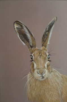 Items similar to Bewitched - from an original pastel painting, hare print, present for hare lovers on Etsy Pastel Drawing, Pastel Art, Animal Paintings, Animal Drawings, Hare Pictures, Hare Illustration, Rabbit Art, Jack Rabbit, Bunny Art