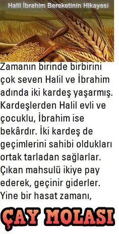 ★·.·´¯`·.·★ Çᴀʏ ᴍᴏʟᴀsɪ ★·.·´¯`·.·★ Halil İbrahim Bereketi  #Halil #İbrahim #Bereketi #Hikaye #Tarla #Buğday