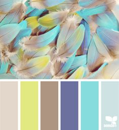 feathered hues: tawny tan, lime grellow, taupe, violet purple, turquoise and baby blue