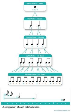 Values & Rests Musical Rhythm note values.will definitely print and post in my classroom!Musical Rhythm note values.will definitely print and post in my classroom! Violin Sheet Music, Music Chords, Piano Music, Music Music, Music Happy, Piano Keys, Piano Lessons, Music Lessons, Music Education Lessons