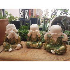 #budas #budinhas #artesanato #budismo #gratidao #cegosurdoemudo #sabios #sabedoria #gesso #pintadoamao #verde #oliva #dourado #jardim #suculentas #decoracao #decoracaodeambiente #ambiente #sala #quarto Statues, Zen Garden Design, Little Buddha, Clay Design, Emoticon, Ganesha, Baby Photos, Garden Sculpture, Wallpaper