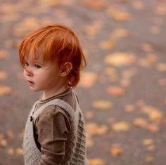 Little redhead man:: Ginger Babies, Ginger Boy, Ginger Hair, Ginger Kids, Precious Children, Beautiful Children, Beautiful Babies, Beautiful People, Beautiful Red Hair
