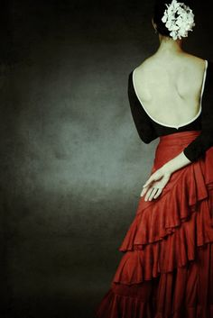 Flamenco Great pic! More