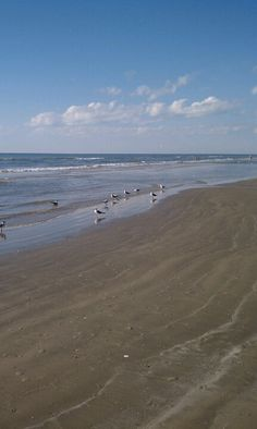 Galveston- I LOVE this place! Me too, and I loved it first! HA