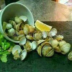 Berberechos | Restaurante tapería Vilarosa en Cedeira, Redondela (Pontevedra)