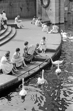 Reesendamm, Foto Germin 1961