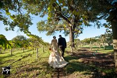 Gallery | The Vineyards at Garden Ridge | Restaurant and Wedding Venue in San Antonio TX