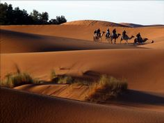 Dunes de Merzouga. Merzouga's dunes. #Dunes #Chegaga #Desert #Maroc #Morocco