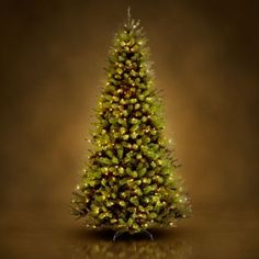 cf81ba334c 7.5  Clear Pre-Lit North Valley Spruce Hinged Christmas Tree - Only  179 -