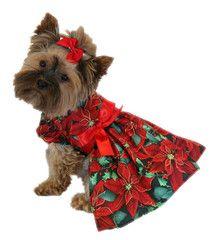 Poinsettia Ribbon Dress