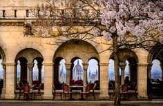 Budapest nicest cafe view by Firas Fadaam on 500px